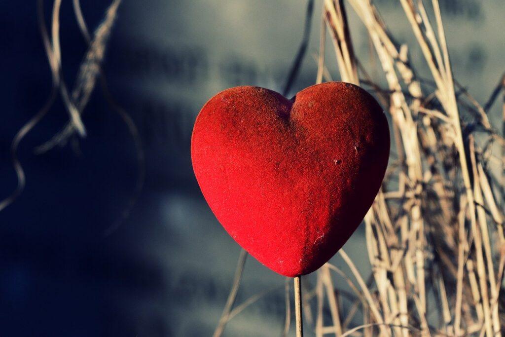 heart, love, ornament